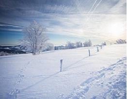 Que faire pour le nouvel an en Alsace ?