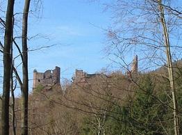Comment devenir chasseur en Alsace ?