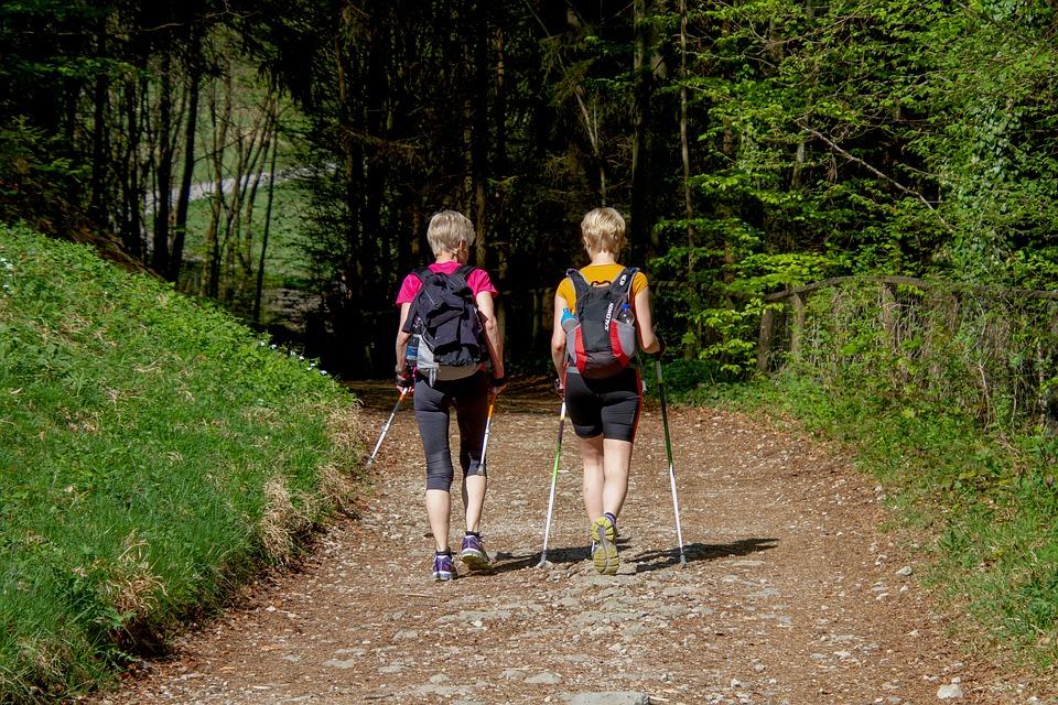 Notre sélection des 3 randonnées incontournables en Alsace
